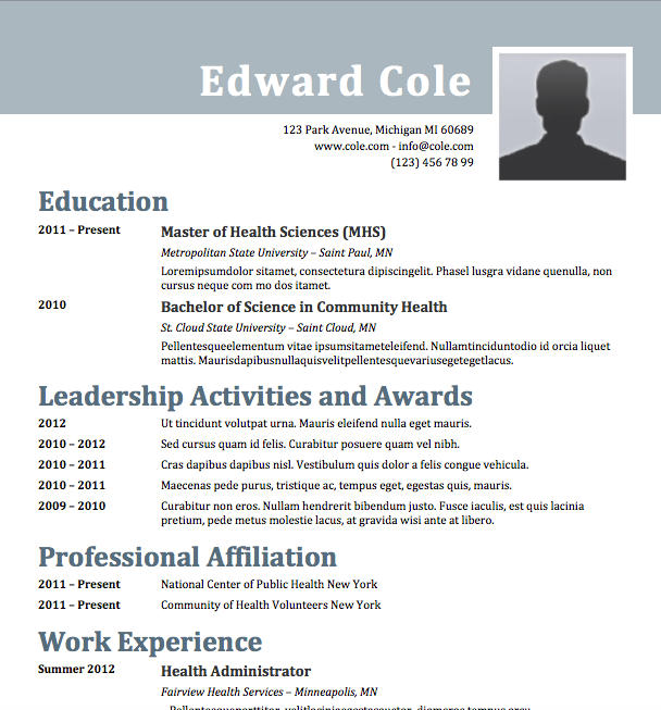 steely - Ms Word Format Resume